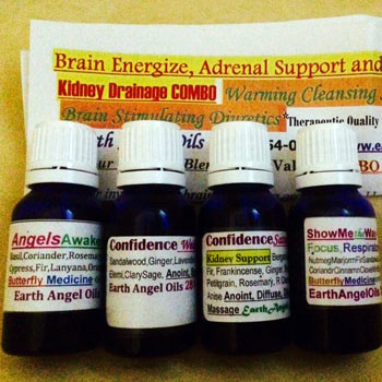 Brain Energize HalfOz Adrenal/Kidney Drainage Combo