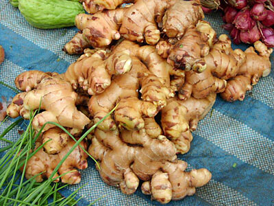 Ginger Root Fresh SD Indonesia