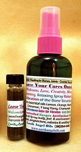 Leave Your Cares Outside Spray/Blend Combo